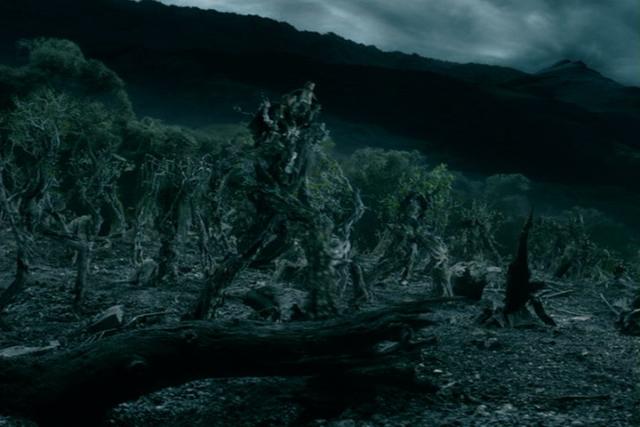 Il Signore degli Anelli è un fantasy epico che colpisce per alcuni dettagli: il potente discorso di Barbalbero è uno di questi.