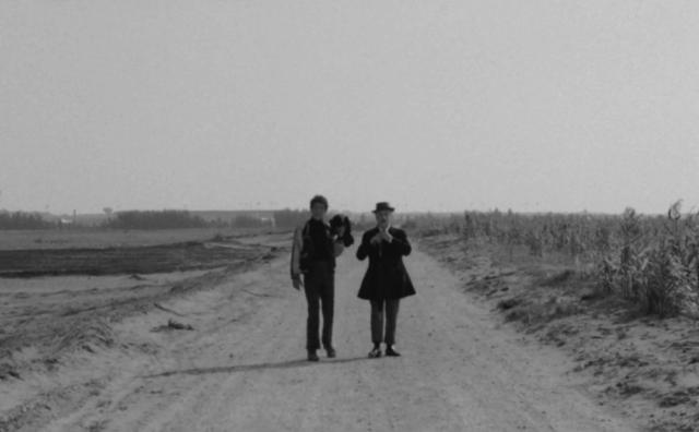 Analisi del film Uccellacci e uccellini, con Totò e Ninetto Davoli, diretta dal regista e intellettuale Pier Paolo Pasolini.